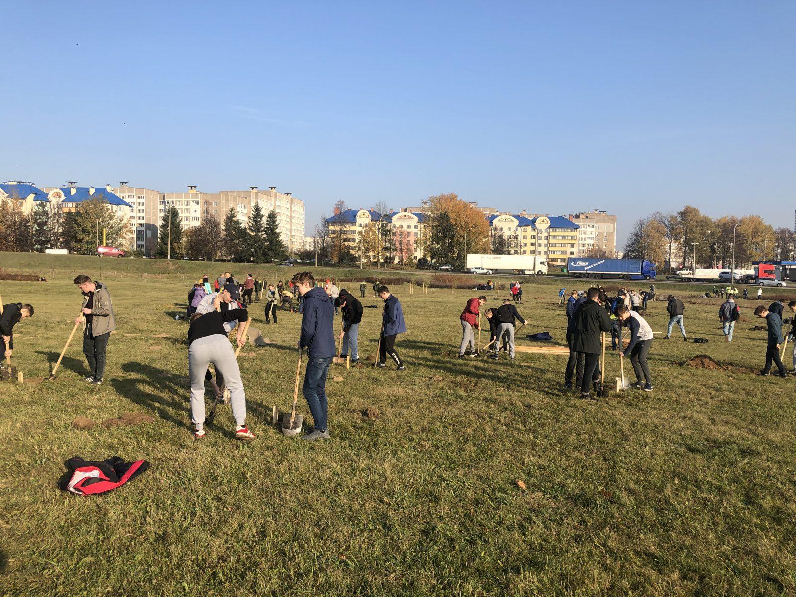 20 октября учащиеся колледжа приняли участие в районой трудовой акции по посадке деревьев.